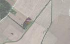 Miškų ūkio paskirties žemės sklypo pardavimo aukcionas Pakruojo r. sav., Lygumų sen., Mantaičių k. (kadastro Nr. 6510/0005:38)