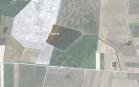 Miškų ūkio paskirties žemės sklypo pardavimo aukcionas Pakruojo r. sav., Pašvitinio sen., Petroniškių k. (kadastro Nr. 6560/0004:135)