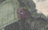 Miškų ūkio paskirties žemės sklypo pardavimo aukcionas Mažeikių r. sav., Židikų sen., Palūšės k. (kadastro Nr. 6134/0003:38)