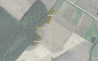 Miškų ūkio paskirties žemės sklypo pardavimo aukcionas Pakruojo r. sav., Lygumų sen., Dvariškių k. (kadastro Nr. 6510/0002:160)