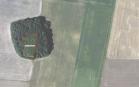 Miškų ūkio paskirties žemės sklypo pardavimo aukcionas Biržų r. sav., Pačeriaukštės sen., Smilgių k. (kadastro Nr. 3653/0002:533)