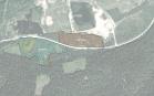 Miškų ūkio paskirties žemės sklypo pardavimo aukcionas Rokiškio r. sav., Juodupės sen., Prūselių k. (kadastro Nr. 7317/0003:52)