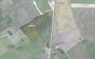 Miškų ūkio paskirties žemės sklypo pardavimo aukcionas Pakruojo r. sav., Pašvitinio sen., Sodeliškių k. (kadastro Nr. 6560/0001:69)