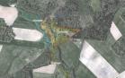 Miškų ūkio paskirties žemės sklypo pardavimo aukcionas Kelmės r. sav., Liolių sen., Virtukų k. (kadastro Nr. 5412/0002:35)