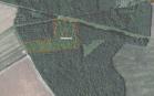 Miškų ūkio paskirties žemės sklypo pardavimo aukcionas Biržų r. sav., Pačeriaukštės sen., Pleirių k. (kadastro Nr. 3653/0001:113)