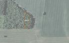 Miškų ūkio paskirties žemės sklypo pardavimo aukcionas Pakruojo r. sav., Klovainių sen., Sitkūnų k. (kadastro Nr. 6533/0004:94)