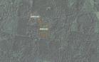 Miškų ūkio paskirties žemės sklypo pardavimo aukcionas Pakruojo r. sav., Žeimelio sen., Steigvilių k. (kadastro Nr. 6535/0004:384)