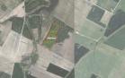 Miškų ūkio paskirties žemės sklypo pardavimo aukcionas Pakruojo r. sav., Lygumų sen., Beniulių k. (kadastro Nr. 6575/0003:70)