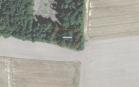Miškų ūkio paskirties žemės sklypo pardavimo aukcionas Pakruojo r. sav., Guostagalio sen., Dvariūkų k. (kadastro Nr. 6520/0005:282)