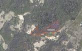 Miškų ūkio paskirties žemės sklypo pardavimo aukcionas Tauragės r. sav., Žygaičių sen., Palolyčio k. (kadastro Nr. 7766/0006:324)