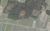 Miškų ūkio paskirties žemės sklypo pardavimo aukcionas Telšių r. sav., Tryškių sen., Pateklėnų k. (kadastro Nr. 7873/0001:84)