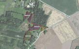 Miškų ūkio paskirties žemės sklypo pardavimo aukcionas Pakruojo r. sav., Pašvitinio sen., Gaubių k. (kadastro Nr. 6558/0001:286)