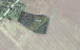 Miškų ūkio paskirties žemės sklypo pardavimo aukcionas Pakruojo r. sav., Pašvitinio sen., Gaubių k. (kadastro Nr. 6558/0001:291)