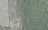 Miškų ūkio paskirties žemės sklypo pardavimo aukcionas Pakruojo r. sav., Žeimelio sen., Plonėno k. (kadastro Nr. 6550/0005:148)
