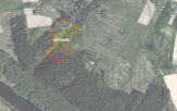 Miškų ūkio paskirties žemės sklypo pardavimo aukcionas Širvintų r. sav., Čiobiškio sen., Pigonių k. (kadastro Nr. 8972/0003:350)
