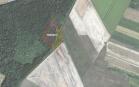 Miškų ūkio paskirties žemės sklypo pardavimo aukcionas Pakruojo r. sav., Linkuvos sen., Ruponių k. (kadastro Nr. 6583/0003:144)