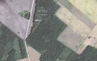 Miškų ūkio paskirties žemės sklypo pardavimo aukcionas Pakruojo r. sav., Lygumų sen., Ąžuolynės vs. (kadastro Nr. 6510/0006:171)