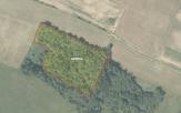 Miškų ūkio paskirties žemės sklypo pardavimo aukcionas Skuodo r. sav., Notėnų sen., Notėnų k. (kadastro Nr. 7537/0004:5)