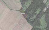Miškų ūkio paskirties žemės sklypo pardavimo aukcionas Pakruojo r. sav., Lygumų sen., Armonaičių k. (kadastro Nr. 6510/0006:170)