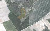 Miškų ūkio paskirties žemės sklypo pardavimo aukcionas Raseinių r. sav., Pagojukų sen., Tendžiogalos k. (kadastro Nr. 7283/0001:23)