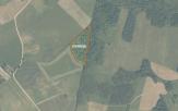 Miškų ūkio paskirties žemės sklypo pardavimo aukcionas Kelmės r. sav., Liolių sen., Ožkeliškės k. (kadastro Nr. 5436/0006:51)