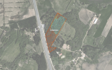 Miškų ūkio paskirties žemės sklypo pardavimo aukcionas Radviliškio r. sav., Radviliškio sen., Šniūraičių k. (kadastro Nr. 7174/0001:240)