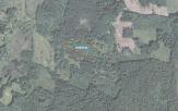 Miškų ūkio paskirties žemės sklypo pardavimo aukcionas Utenos r. sav., Daugailių sen., Pikčiūnų k. (kadastro Nr. 8217/0004:34)