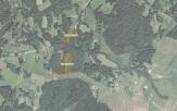 Miškų ūkio paskirties žemės sklypo pardavimo aukcionas Utenos r. sav., Utenos sen., Pauolio k. (kadastro Nr. 8264/0002:311)