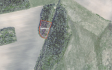 Miškų ūkio paskirties žemės sklypo pardavimo aukcionas Skuodo r. sav., Mosėdžio sen., Virbalų k. (kadastro Nr. 7527/0003:172)