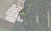 Miškų ūkio paskirties žemės sklypo pardavimo aukcionas Pakruojo r. sav., Klovainių sen., Margių k. (kadastro Nr. 6530/0003:338)
