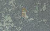 Miškų ūkio paskirties žemės sklypo pardavimo aukcionas Utenos r. sav., Tauragnų sen., Alksniškių k. (kadastro Nr. 8267/0003:550)