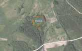 Miškų ūkio paskirties žemės sklypo pardavimo aukcionas Elektrėnų sav., Beižionių sen., Barboriškių k. (kadastro Nr. 7917/0003:169)