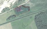 Miškų ūkio paskirties žemės sklypo pardavimo aukcionas Rokiškio r. sav., Juodupės sen., Prūselių k. (kadastro Nr. 7317/0001:46)