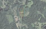 Miškų ūkio paskirties žemės sklypo pardavimo aukcionas Utenos r. sav., Daugailių sen., Žadavainių k. (kadastro Nr. 8217/0003:120)