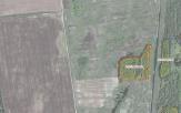 Miškų ūkio paskirties žemės sklypo pardavimo aukcionas Pakruojo r. sav., Žeimelio sen., Pikčiūnų k. (kadastro Nr. 6535/0005:150)