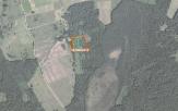 Miškų ūkio paskirties žemės sklypo pardavimo aukcionas Utenos r. sav., Daugailių sen., Gatelių k. (kadastro Nr. 8210/0008:113)