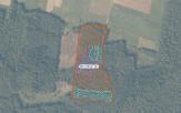 Miškų ūkio paskirties žemės sklypo pardavimo aukcionas Švenčionių r. sav., Pabradės sen., Pavoverės k. (kadastro Nr. 8650/0002:140)