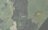 Miškų ūkio paskirties žemės sklypo pardavimo aukcionas Švenčionių r. sav., Strūnaičio sen., Meškauščiznos k. (kadastro Nr. 8685/0004:251)