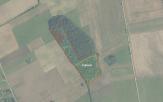 Miškų ūkio paskirties žemės sklypo pardavimo aukcionas Kelmės r. sav., Šaukėnų sen., Vidsodžio k. (kadastro Nr. 5486/0001:60)