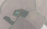 Miškų ūkio paskirties žemės sklypo pardavimo aukcionas Pakruojo r. sav., Lygumų sen., Mantaičių k. (kadastro Nr. 6510/0005:43)