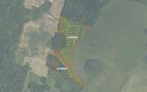 Miškų ūkio paskirties žemės sklypo pardavimo aukcionas Kelmės r. sav., Tytuvėnų apylinkių sen., Žaliknio k. (kadastro Nr. 5442/0003:59)