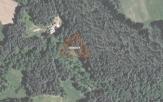 Miškų ūkio paskirties žemės sklypo pardavimo aukcionas Prienų r. sav., Šilavoto sen., Naujasodžio k. (kadastro Nr. 6958/0001:45)
