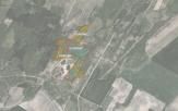 Miškų ūkio paskirties žemės sklypo pardavimo aukcionas Radviliškio r. sav., Radviliškio sen., Šniūraičių k. (kadastro Nr. 7174/0006:57)