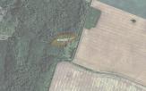 Miškų ūkio paskirties žemės sklypo pardavimo aukcionas Pakruojo r. sav., Žeimelio sen., Aukštadvario k. (kadastro Nr. 6518/0004:24)