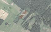 Miškų ūkio paskirties žemės sklypo pardavimo aukcionas Utenos r. sav., Užpalių sen., Linskio k. (kadastro Nr. 8220/0003:120)