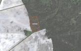 Miškų ūkio paskirties žemės sklypo pardavimo aukcionas Šakių r. sav., Lukšių sen., Lazdinės k. (kadastro Nr. 8464/0007:51)