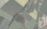 Miškų ūkio paskirties žemės sklypo pardavimo aukcionas Pakruojo r. sav., Lygumų sen., Kauksnujų k. (kadastro Nr. 6528/0002:506)