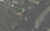 Miškų ūkio paskirties žemės sklypo pardavimo aukcionas Kazlų Rūdos sav., Jankų sen., Pilypų k. (kadastro Nr. 8415/0003:171)