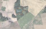 Miškų ūkio paskirties žemės sklypo pardavimo aukcionas Utenos r. sav., Vyžuonų sen., Starkų k. (kadastro Nr. 8280/0001:370)