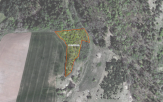 Miškų ūkio paskirties žemės sklypo pardavimo aukcionas Jurbarko r. sav., Seredžiaus sen., Pašilių k. (kadastro Nr. 9467/0001:69)